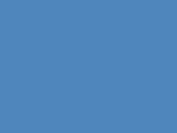 The Penguins' family
