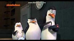 Pingwiny z Madagaskaru - Wierszyk Kowalskiego do Doris