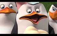 Pingwins 13