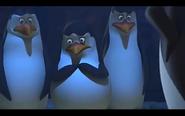 Pingwins 19