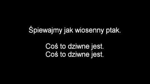 (Polish) Penguins of Madagascar - What the Heck is That? Lyrics