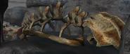 Rd skull 5