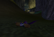Dragon rider undercover (8)