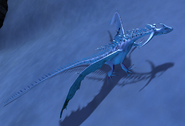 Changewing frost