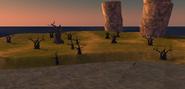 Mudraker trees