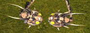 Tzipple heads 2