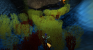 RoS underwater