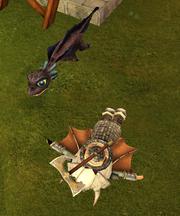 Bby wwalker wingless