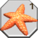 Item Starfish