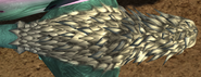 Woollyh marks 2
