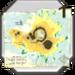 Item Icestorm Island Map