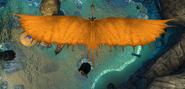 Timberj wingspan