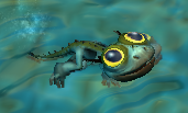 Bby tterror swim