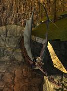 Wwalker fly