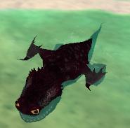 Bby skrill swim