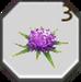 Item milk thistle flowers
