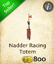 Nadder Racing Totem
