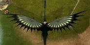 Tscauld wingspan