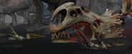 Rd skull 3