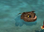 Bby quak swim