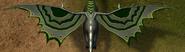 Dramil wing marks 1