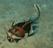 Bby scutter swim