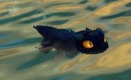 Bby grimg swim