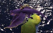 Mudraker fly1