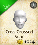Criss crossed scar