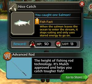 Fish win