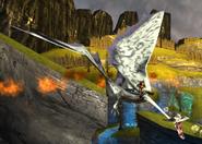 Tphoon fly shot 1