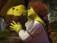 Shrek and Fiona after fight