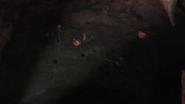 Vlcsnap-2015-01-12-20h10m49s8