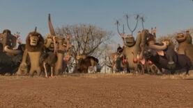 Madagascar2-disneyscreencaps.com-9148