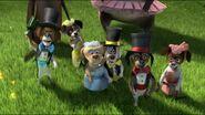 Six Circus Dogs 2