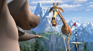 Gloria and melman in a tightrope by noe yyy-d593htd
