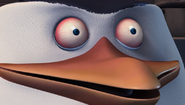 The Penguins of Madagascar - Stay up late Skipper