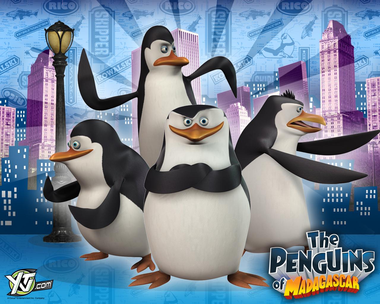 image - penguins-of-madagascar-wallpaper-city-backround-penguins-of