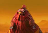 Master-chicken