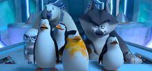 Penguins-of-Madagascar-International-Trailer-2