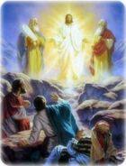 Transfiguration-255x336