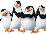 The Penguin Team