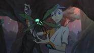 Olkari and Dragonfly-like Wood Bug