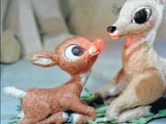 Rudolph-the-red-nosed-reindeer-14b95db0a702fc9c