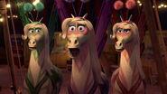 Madagascar3-disneyscreencaps.com-8931