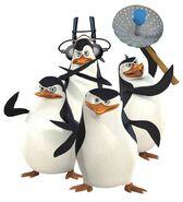 Los pinguinos de madagascar by pdmypnf-d3304d7