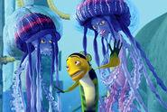 Shark-Tale-Jellyfish