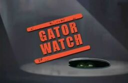 Gator-Watch-Title