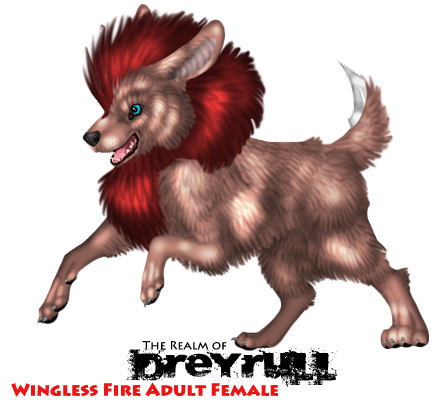File:Wingless fire adult female.png