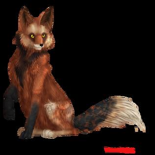Fox'x